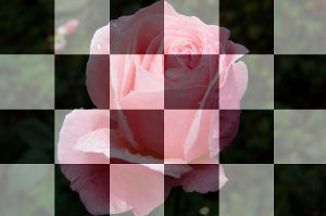 Photo with overlayed chessboard