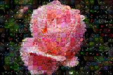 Фото мозаика из цветов